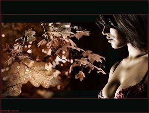 http://www.erotische-pspcreaties.nl/eigen_lessen/autumn_memories/autumn_memories.htm