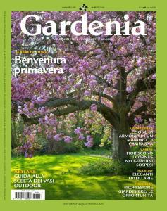 Gardenia - Marzo 2016