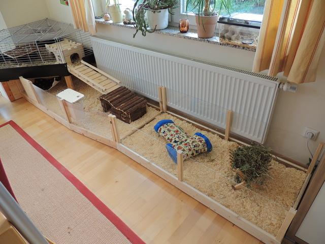eure k fige oder eigenbauten meerschweinchen haltung seite 144. Black Bedroom Furniture Sets. Home Design Ideas