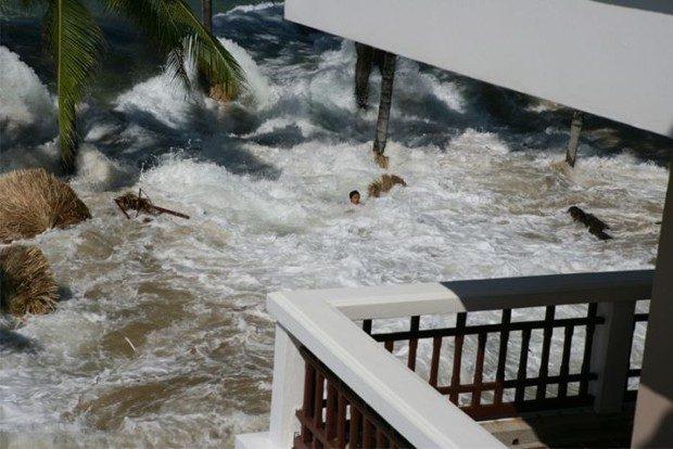 Tsunami widziane z balkonu 5
