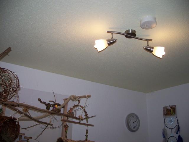 tageslichtlampe f r herbst winter vwfd wellensittich forum. Black Bedroom Furniture Sets. Home Design Ideas