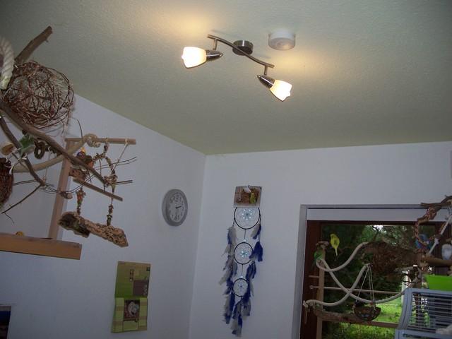 tageslichtlampe f r herbst winter wellensittich lebensraum wellensittich forum. Black Bedroom Furniture Sets. Home Design Ideas