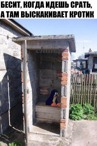 Строим туалет в деревне
