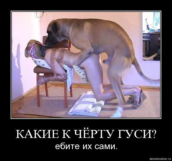 сильно дойки дивушка русский сабака маршрутки