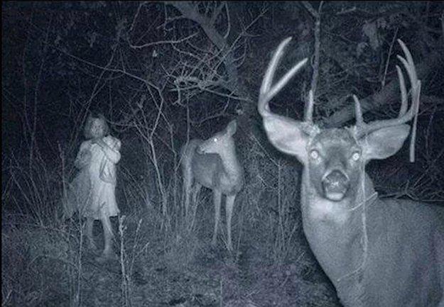 Фото приведений самые страшные и