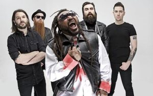 Full Discography : Skindred
