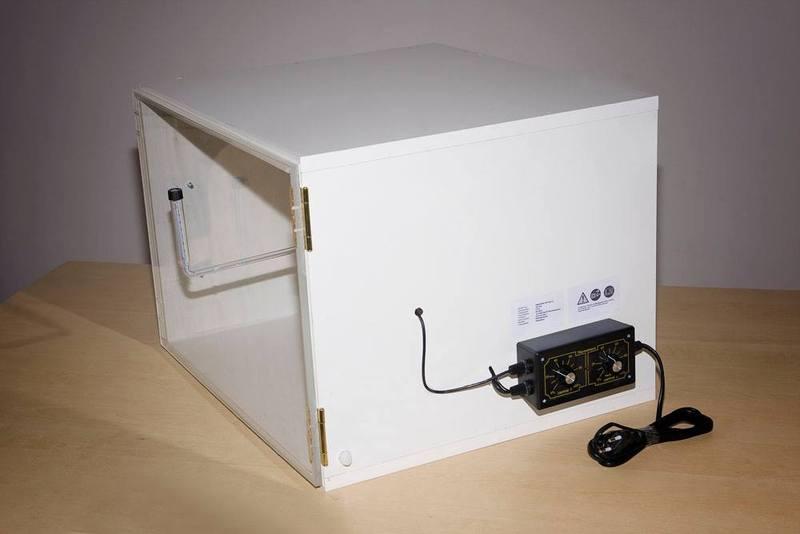 Thermostat 1995 Eskorte ersetzen