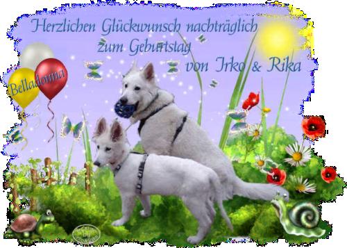 An den Beitrag angehängtes Bild: http://abload.de/img/2013-05-19_belladonnatpbs5.png