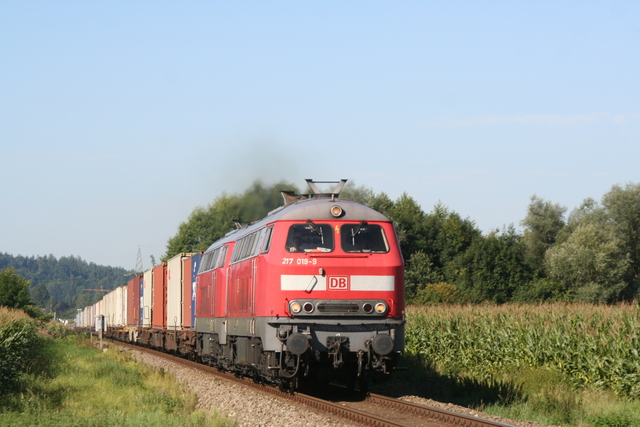 217 019-9 + 217 011-6 bei Heiligenstatt(Obb)