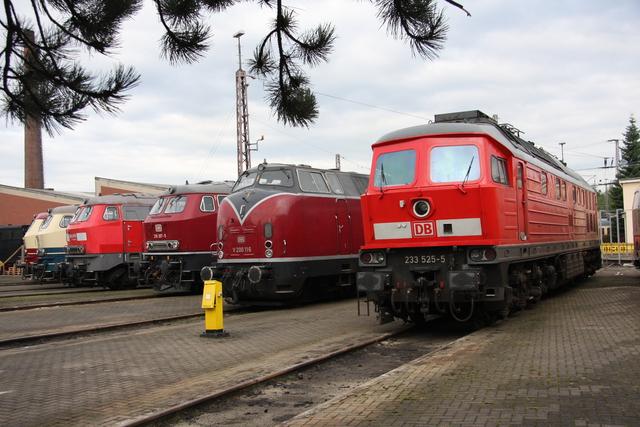 233 525-5 + V200 116 +218 387-9 + 225 021-5 +217 014-0 + 218 105-5 BW Osnabrück