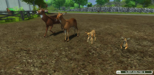 Forest Animals v 1.0 placeable