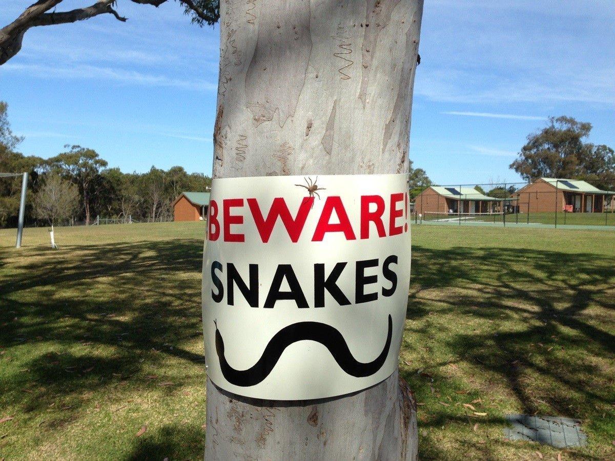 Tymczasem w Australii #2 12