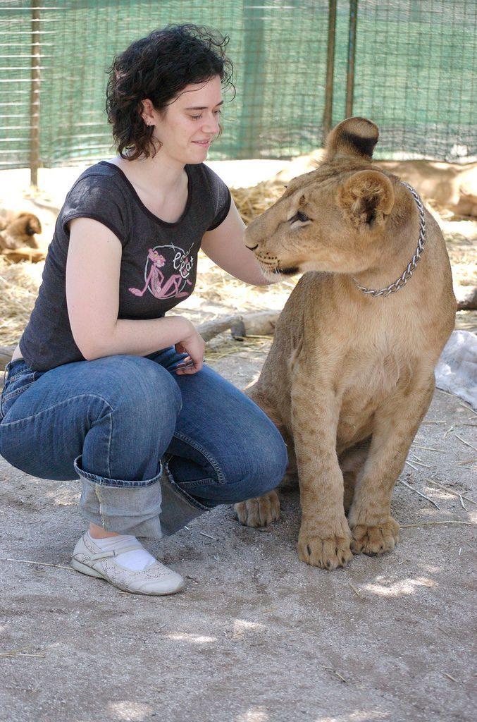 Zoo dla odważnych 18