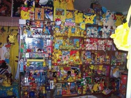 Wielbicielka pokemonów 14