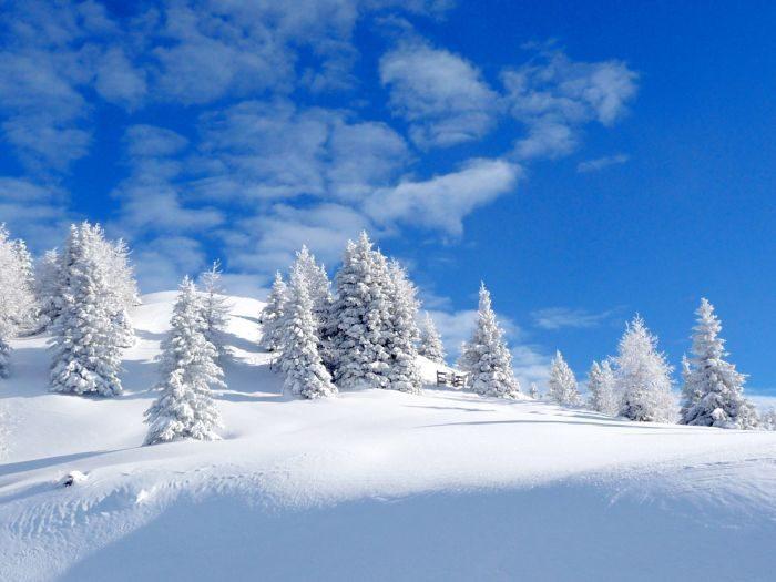 Zima na zdjęciach 5