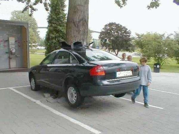 Wypadki samochodowe 10