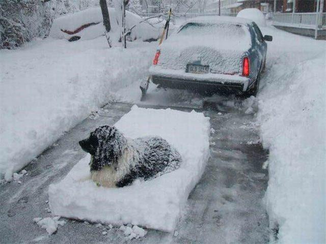 Kierowcy kontra zima 32