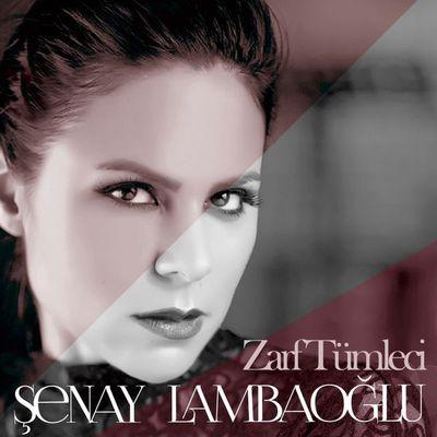 8680985005928 6008curp Şenay Lambaoğlu   Zarf Tümleci (2014)