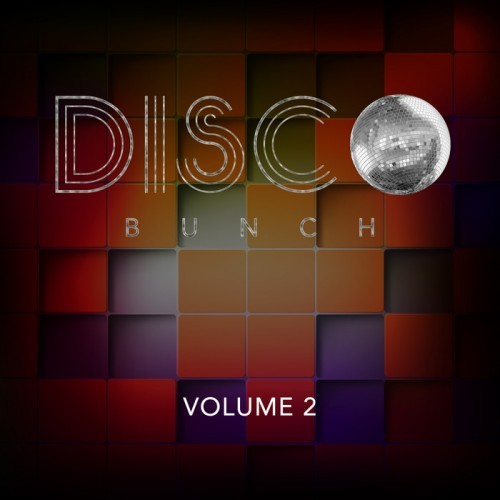 VA - Disco Bunch, Vol. 2 (2014)