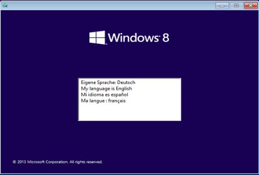 Microsoft Windows 8.1 Pro WMC - (Antonhyip)