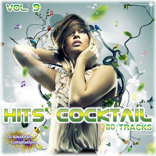 HITS COCKTAIL VOL. 9 2014 [ ALBUM ORIGINAL ]