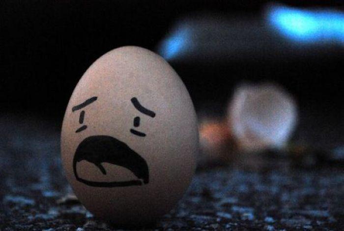 Sekretne życie jajek 48