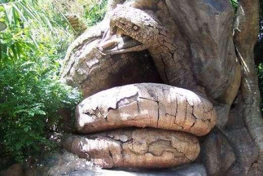 Rzeźba w drzewie 13