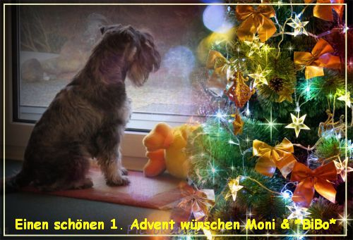 An den Beitrag angehängtes Bild: http://abload.de/img/advent1.154yj7.jpg