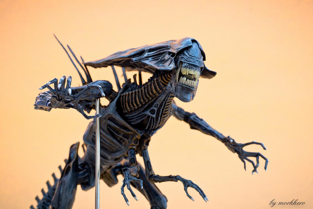 [Bild: alien-queen-neca-20158lbqu.jpg]