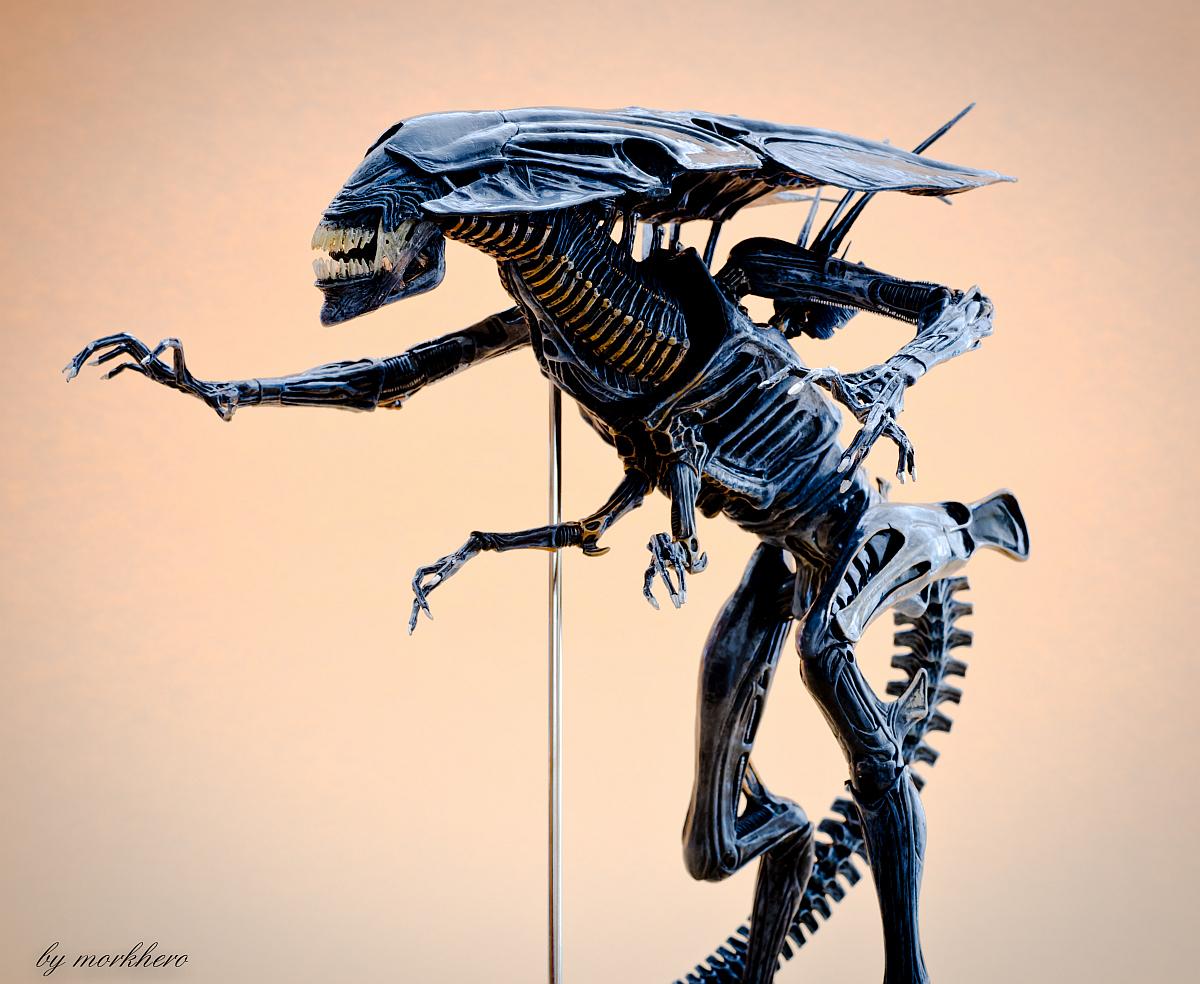 [Bild: alien-queen-neca-20159jb7z.jpg]