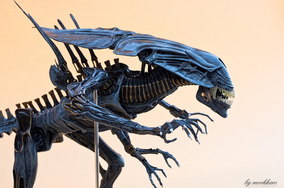 [Bild: alien-queen-neca-2015e0avo.jpg]