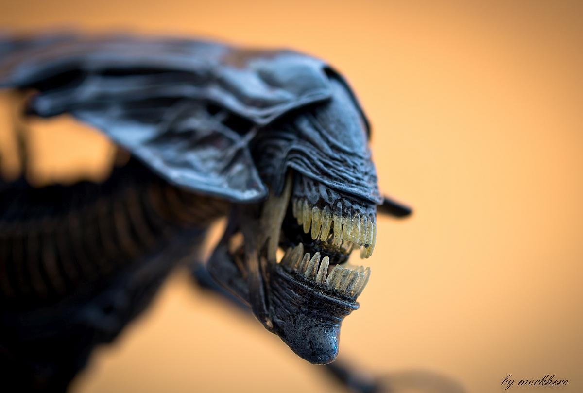 [Bild: alien-queen-neca-2015rma7k.jpg]