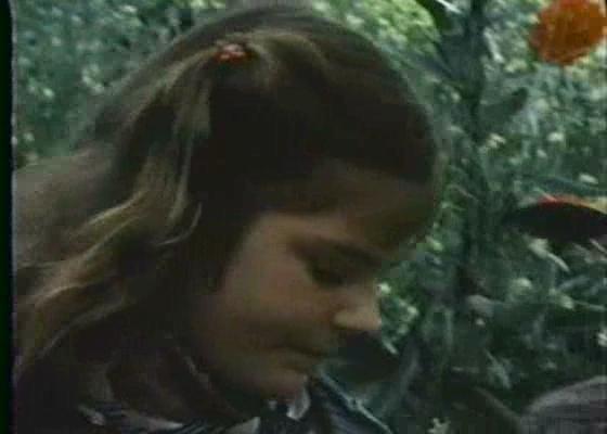 allsummerinaday-1982-ruj9j.jpg
