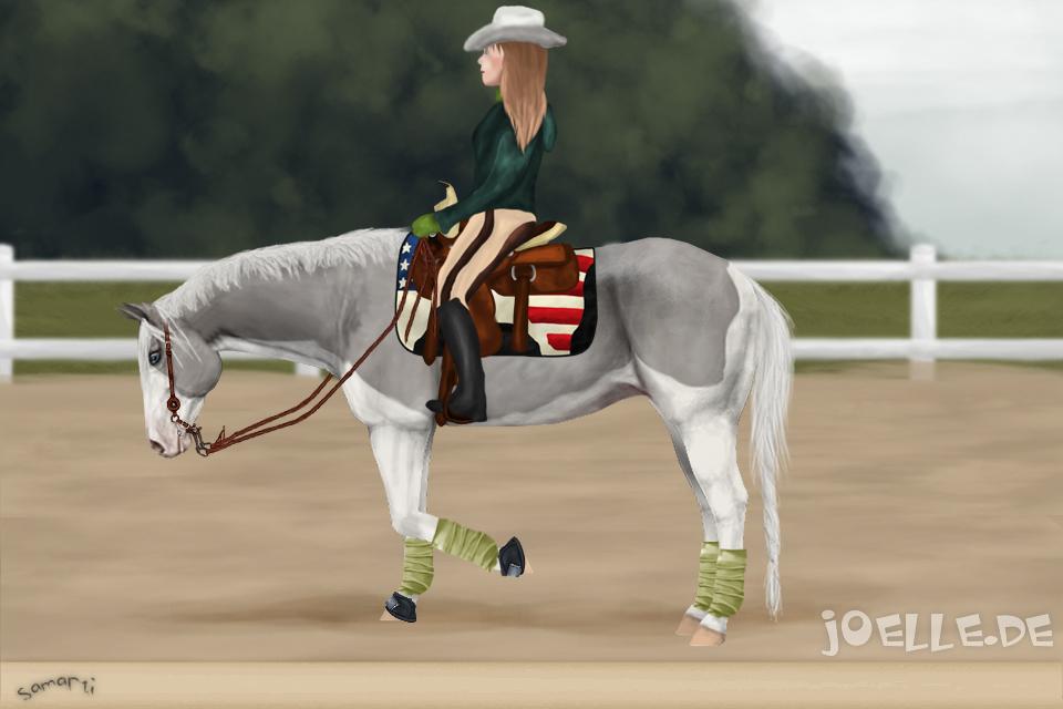 pferd wendeschmerz ursachen