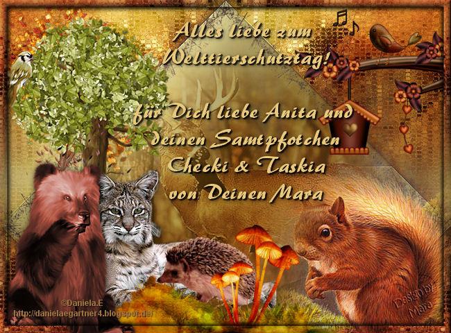 An den Beitrag angehängtes Bild: http://abload.de/img/anita-welttierschutzt90uuu.jpg
