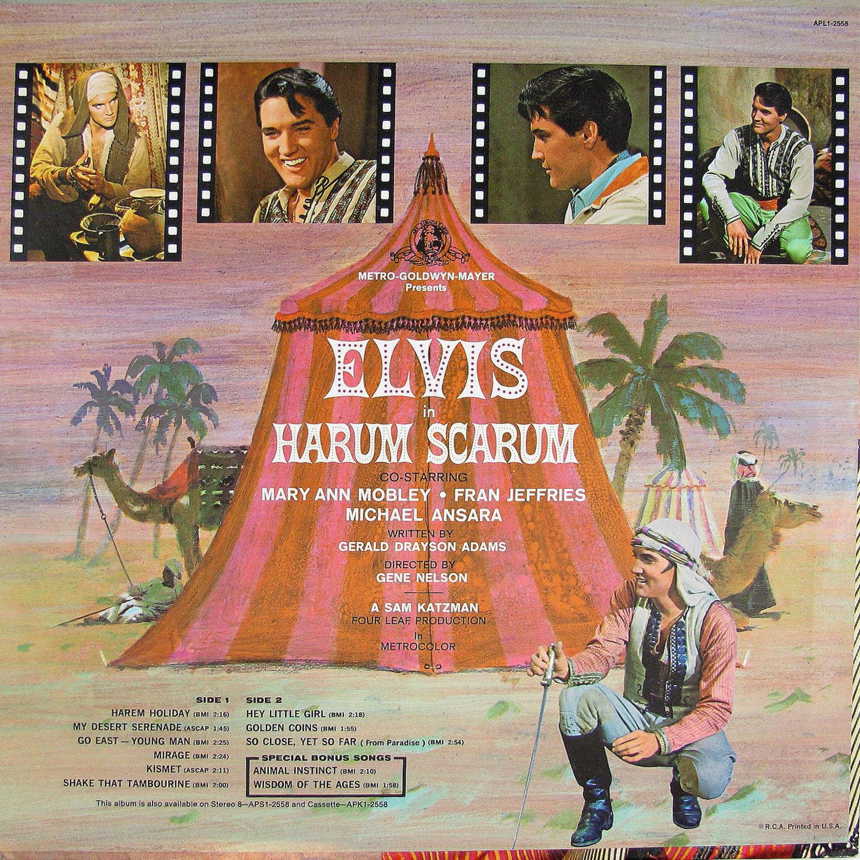 HARUM SCARUM Apl1-2558bw8dpe