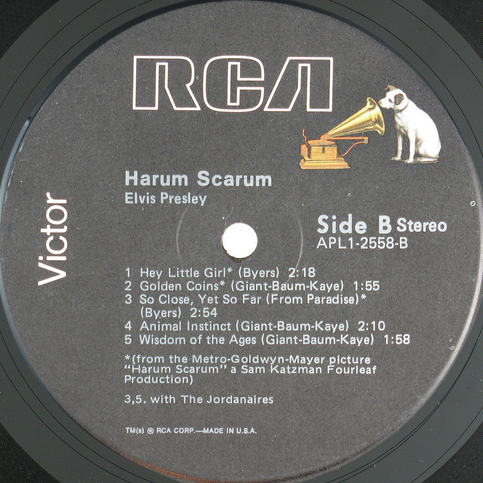 HARUM SCARUM Apl1-2558d3qfzc