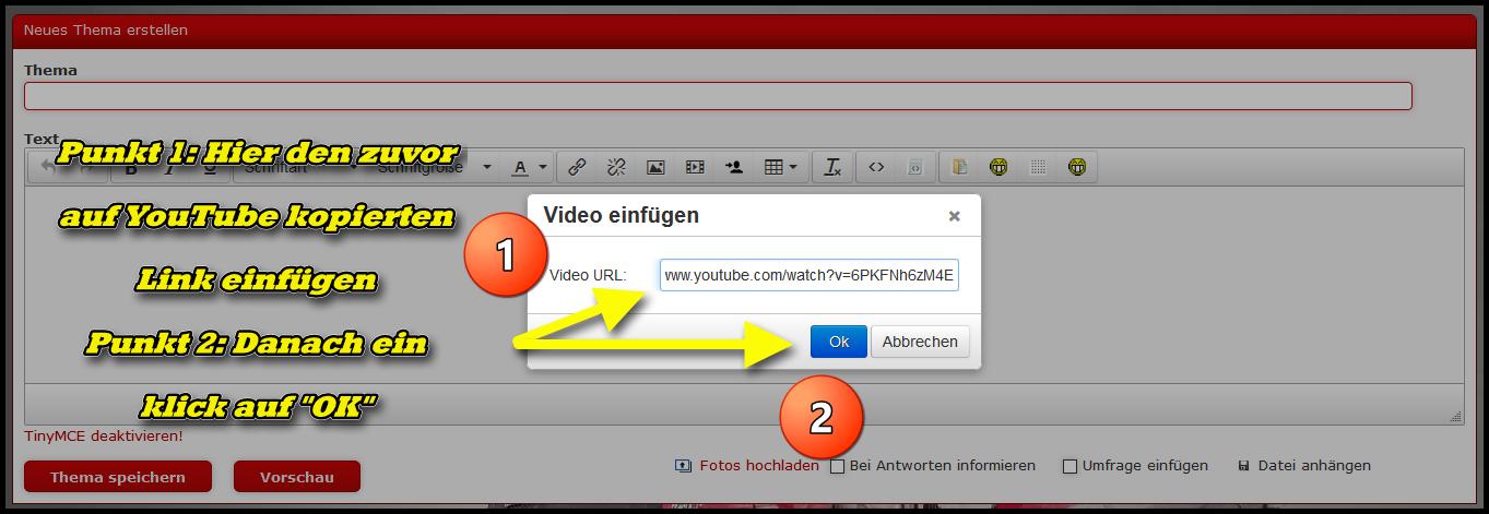 2: Im angezeigen Menüfeld dann den zuvor kopierten Link einfügen und auf OK klicken
