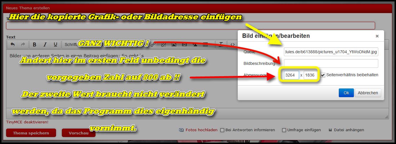 Kopiert nun die zuvor kopierte Grafik- oder Bildadresse in das obere Menüfeld und ändert die vorhandene Bildgröße auf maximal 800 px ab !