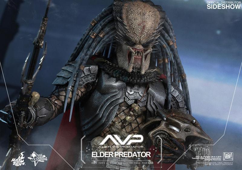 [Bild: avp-elder-predator-siqka33.jpg]