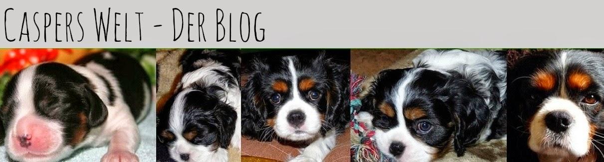 http://casperswelt.blogspot.de/