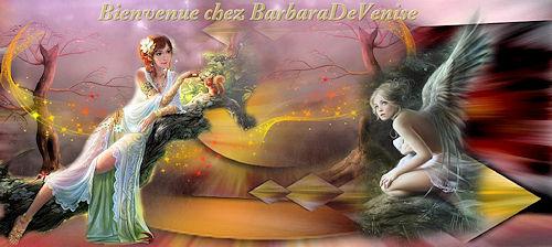 http://www.barbaradevenise.fr/