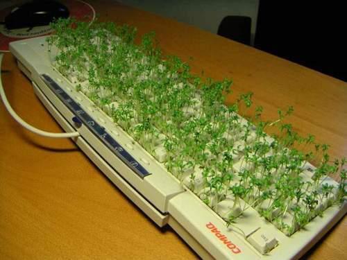 Jak wykorzystać stary sprzęt komputerowy ? 8