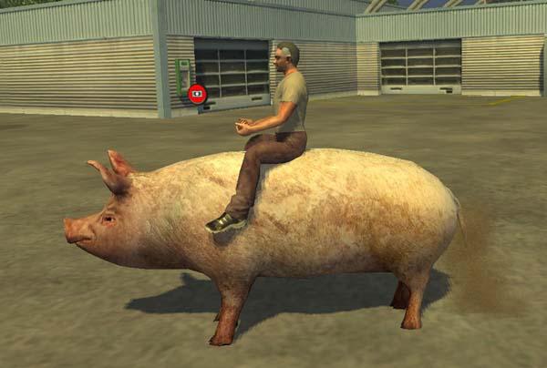 Farming Simulator 2013 Mods Borstie-v-1icyyd