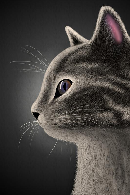 [Bild: cat5-kytxfl.jpg]