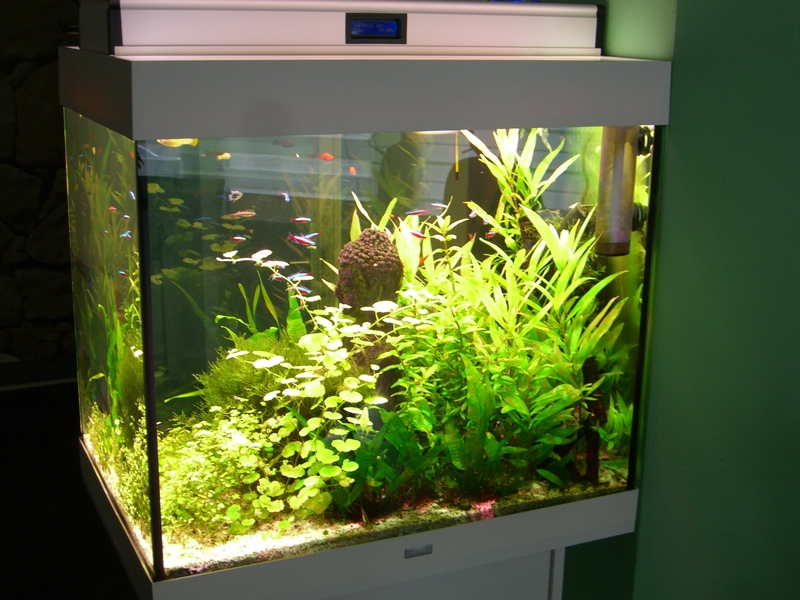 komponenten f r eine led aquarium beleuchtung www. Black Bedroom Furniture Sets. Home Design Ideas