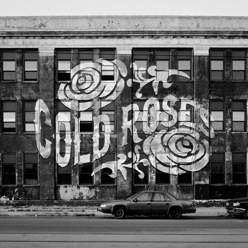 Cold Roses - No Silence in the City (2014)