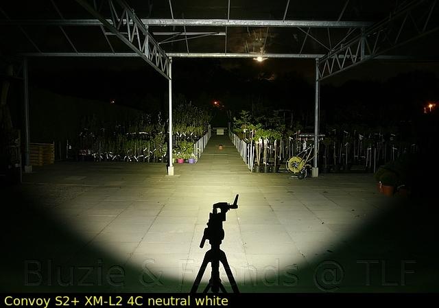 comp_p1160156yzuaudqsix.jpg
