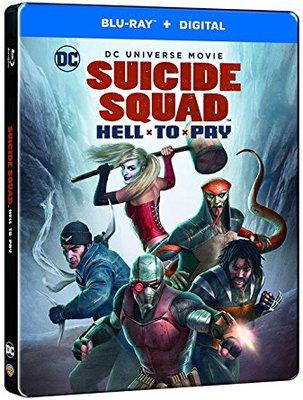 Suicide Squad - Un Inferno Da Scontare 2018 .avi AC3 BRRIP - ITA - hawklegend