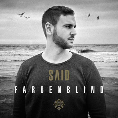 Cover: Said - Farbenblind (2017)